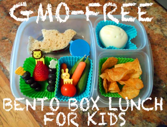 gmo free bento box lunches for kids kristen arnett 39 s green beauty team. Black Bedroom Furniture Sets. Home Design Ideas