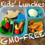 GMO-Free Bento Box Lunches for Kids
