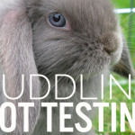 China's Demand for Animal Testing in Cosmetics and the Brands that Are Giving In